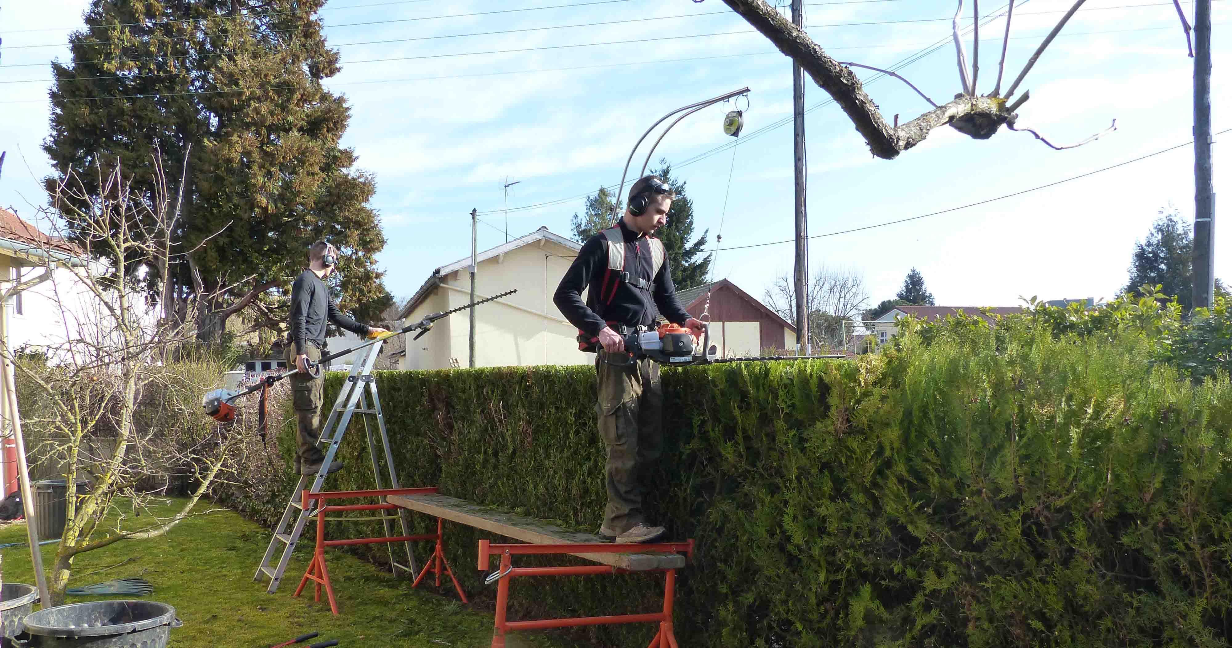 paysagiste mâcon entretien