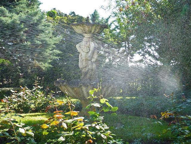 Entretien de jardin creches sur saone abattage d 39 arbres for Entretien jardin particulier 95